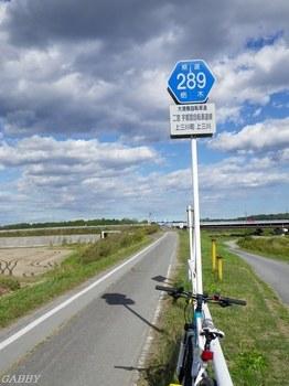 自転車専用県道